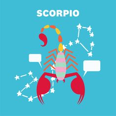 Just a heads up: Scorpio will kick off this month being a little worried about finances. But don't stress it too much—talking things out with a friend will help you figure out how to handle it. February Horoscope, Monthly Horoscope, Time To Tidy Up, Astrology And Horoscopes, Marie Kondo, It's Your Birthday, Capricorn, Zodiac Signs, Stress