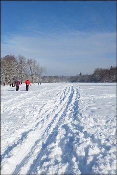 Liegt erst einmal genügend Schnee, lässt es sich auch in den städtischen Parks problemlos Langlaufen. Parks, Snow, Outdoor, Cross Country Skiing, Landscape, Outdoors, Outdoor Games, The Great Outdoors, Eyes