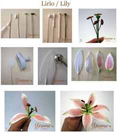How to make a fondant lily