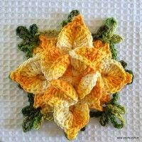 Flor estrela passo a passo | Croche.com.br