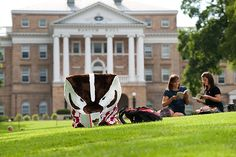 Bucky gets some good reading in on Bascom.