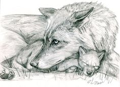Wolf and Pup by silvercrossfox.deviantart.com on @deviantART