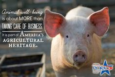 Proud to uphold America's ag heritage!
