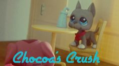 LPS Dutchess Team: EP. 5: Chocoa's Crush