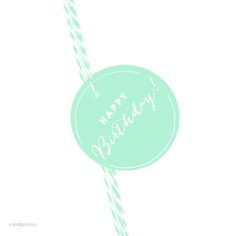 AP58557_andaz_press_gift_tags_circle_happy_birthday_playful_Mint Green_photo
