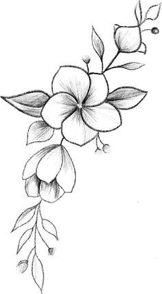 Easy Flower Drawings, Flower Art Drawing, Pencil Drawings Of Flowers, Flower Drawing Tutorials, Flower Sketches, Art Drawings Sketches Simple, Pencil Art Drawings, Doodle Drawings, Doodle Art