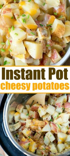 instant pot recipes Instant Pot cheesy bacon ranch potatoes are an amazing side dish for your family meal, or for the holidays next to your ham or turkey for sure! Instant Pot Potato Recipe, Best Instant Pot Recipe, Instant Pot Dinner Recipes, Side Dish Recipes, Instant Potatoes, Party Dips, Instant Pot Pressure Cooker, Pressure Cooker Recipes, Pressure Cooker Potatoes