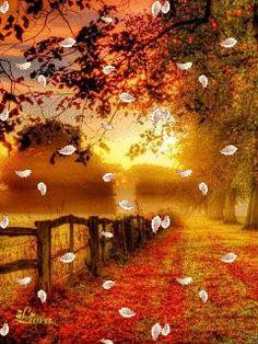 Осень - анимация на телефон №1345959