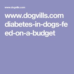 www.dogvills.com diabetes-in-dogs-feed-on-a-budget