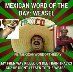 spanish word of the day Mexican Word Of Day, Mexican Words, Word Of The Day, Silly Jokes, Funny Jokes, Funny Shit, Funny Stuff, Stupid Jokes, Sarcastic Humor