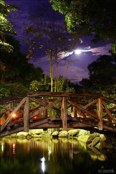 A small bridge crossing a lake on a square called Batista Campos Square, located in the downtown part of Belém, Brazil.