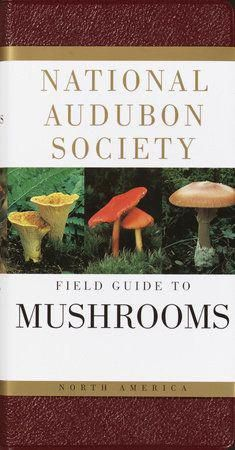 read online National Audubon Society Field Guide to North American Mushrooms National Audubon Society Field Guides book Growing Mushrooms, Wild Mushrooms, Stuffed Mushrooms, Parts Of A Mushroom, Edible Mushrooms, Audubon Society, Mushroom Hunting, Thing 1, Wild Edibles