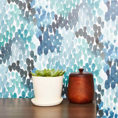 the best places to buy temporary wallpaper online | best temporary