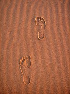Footprints in the sand,Sahara desert. Foto Online, Desert Dream, Desert Sunset, Desert Life, Am Meer, The Last Airbender, Earth Tones, The Dreamers, Beach