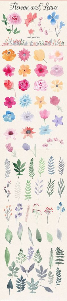 50% off! Watercolor Design Kit - Objects