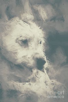 Animal Print featuring the photograph Digital Oil Painting Of A Cute Scruffy Dog by Ryan Jorgensen