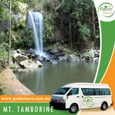 Mount Tamborine Day Tour with FREE Wine Tasting for only $79.  Things to do: - Gallery Walk - Glow Worm - Wine Tasting - Rock Pools and Lookout  Start planning your trip today, call us on 0499077053 or visit our website at www.palmtours.com.au to book your tour.  #palmtours #mttamborine #goldcoast #budgettours #brisbane #australia #traveltours #tour