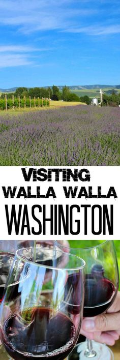 Things to Do & See in Walla Walla, WA platingsandpairings.com