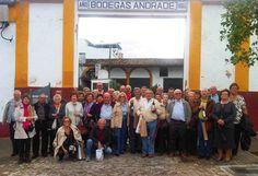 Bodegas Andrade. Grupo de visitantes. #comarcadedonana #bodega #vino #uva #catas #espectaculos #caballos #bodega #tradicion #dulces Dresses, Wine Cellars, Horses, Group, Sweets, Vestidos, Dress, Gown, Outfits