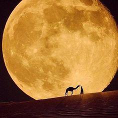 【今夜は中秋の名月】素晴らしく美しい満月の画像ツイートまとめ【明日はスーパームーン】 - Togetterまとめ