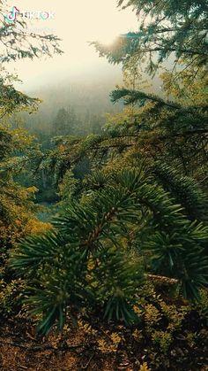 Beautiful Nature Scenes, Beautiful Photos Of Nature, Beautiful Nature Wallpaper, Beautiful Places To Travel, Amazing Nature, Beautiful World, Aesthetic Photography Nature, Rain Photography, Nature Gif