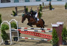 """Blowing Rock Horse Show - located at the historic horse show grounds in Mayview, you can enjoy a spectacular display of the finest show horses in the country as they chase the silk and silver of the """"Oldest Continuous Outdoor Horse Show In America""""."""