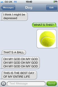 Hahahahaha!!! Funny texts from dogs to owners
