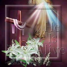 He Is Alive easter jesus easter quotes easter images easter quote happy easter happy easter. easter pictures funny easter quotes jesus quotes religious easter quotes happy easter quotes quotes for easter Jesus Is Alive, He Is Alive, Happy Easter Quotes, Happy Quotes, Good Friday Images, Sending Prayers, Resurrection Day, Easter Religious, Easter Pictures