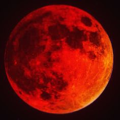 September 26/28 Total Super Lunar Eclipse #2K15 #epic #moon #bloodmoon #beautiful #awesome #nature #amazing #science #supermooneclipse @griffithobservatory @ustream @livestream