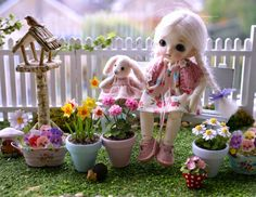 Lovejoy Bears: ♥ A Lovejoy Bears Jigsaw Puzzle, a Magazine Feature and a Garden ♥