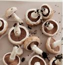 Did you know: Meaty mushrooms are low in calories, fat-free and can be a delicious substitute for.