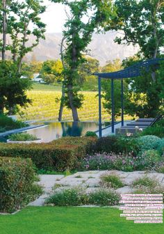 Cape Town(garden overlooking vineyard)