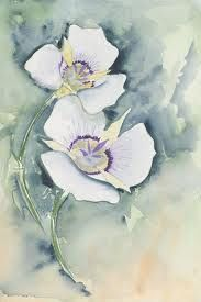 Sego Lilly -- Water Colour painting