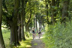 Fahrradfahrer in der Freizeitanlage Sennfeld bei Schweinfurt…
