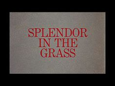 Splendor In The Grass // Opening Title