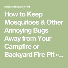 ideas about keeping mosquitos away on pinterest mosquitoes mosquito