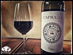 Score 90/100 Wine review, tasting notes, information for 2014 Vegalfaro Carprasia. 100% Bobal red from Utiel-Requena Spain. Dark, powerful, intense, savory