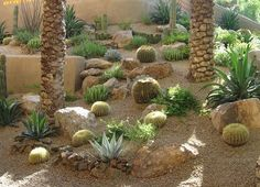 arizona gardens yards | HD Wallpapers Arizona Cactus Garden