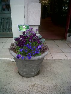 Spring SUN container, Greenwich CT