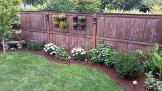 Backyard in progress