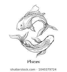 Pisces, fishes, Zodiac sign. Astrological horoscope collection. Outline vector illustration. Outline hand drawing coloring page for the adult coloring book.