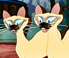 siamese cats lady and the tramp