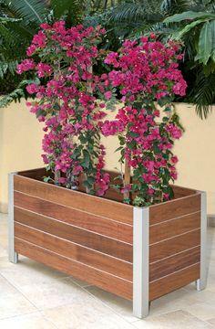 Planters Mariner planter Jatoba with Zephyr banding