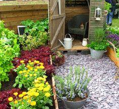 Садовые хитрости: 12 золотых советов. Несколько очень полезных советов, которые помогут увлечённым садоводам создать на даче свой маленький рай: