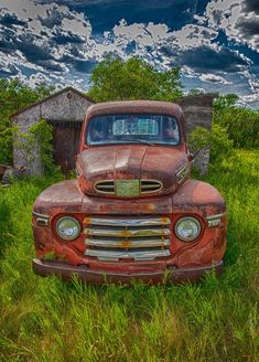 Rust Lord. Saskatchewan. Photo by Marie Rouble. Source Flickr.com