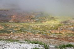 archaea articleThe Midway Geyser Basin at Yellowstone National Park, teeming with colorful archaea and bacteria. Creative Commons Wing-Chi Poon. Click image for license and source.