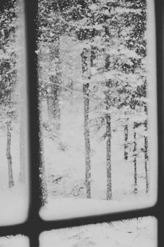 Watching the snow from the cozy side of the window...