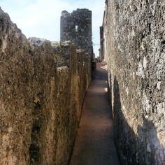 La doppia cinta muraria di #Capalbio - #Maremma - #Tuscany.