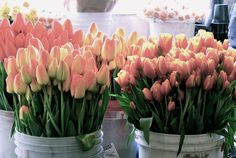 flowers- spring, I love tulips, they last a long time in an arrangement and look wonderful in mass