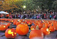 Pumpkin Float – The Boston Common Frog Pond Boston In The Fall, In Boston, Boston Weekend, Fairs And Festivals, Fall Festivals, Boston Things To Do, 3 Things, Food Truck Festival, Boston Common